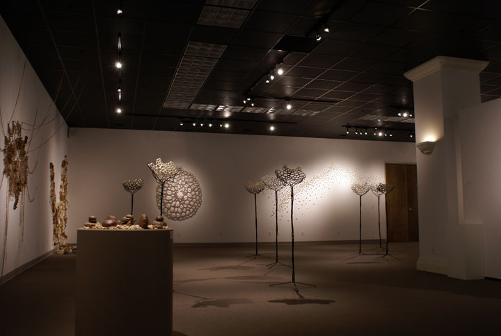 Cell structures of the exhibition