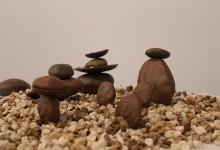 Seeds & Pods