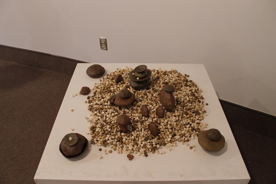 Seeds & Pods 2 8313 web